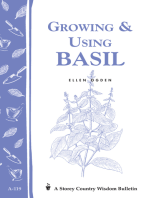 Growing & Using Basil