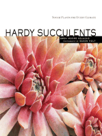 Hardy Succulents