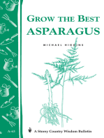 Grow the Best Asparagus
