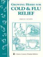 Growing Herbs for Cold & Flu Relief