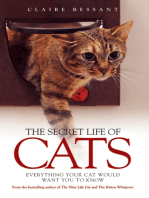 The Secret Life of Cats