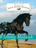 Johnny Mohawk