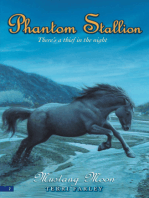 Phantom Stallion #2