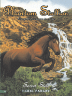 Phantom Stallion #19