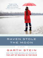 Raven Stole the Moon