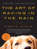 The Art of Racing in the Rain