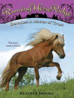 Running Horse Ridge #2