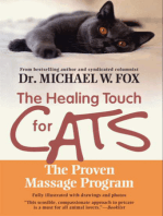 Healing Touch for Cats