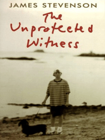 The Unprotected Witness
