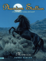 Phantom Stallion #14
