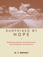 Surprised by Hope Participant's Guide