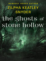 The Ghosts of Stone Hollow