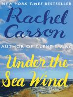 Under the Sea Wind