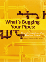 What's Bugging Your Pipes: How Microorganisms Affect Plumbing Systems