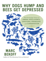 Why Dogs Hump and Bees Get Depressed