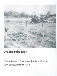 One Screaming Eagle