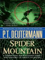 Spider Mountain