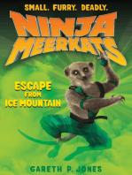 Ninja Meerkats (#3)