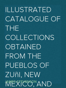 Illustrated Catalogue of the Collections Obtained from the Pueblos of Zuñi, New Mexico, and Wolpi, Arizona, in 1881 Third Annual Report of the Bureau of Ethnology to the Secretary of the Smithsonian Institution, 1881-82, Government Printing Office, Washington, 1884, pages 511-594