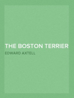 The Boston Terrier and All About It A Practical, Scientific, and Up to Date Guide to the Breeding of the American Dog
