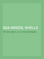 Sea-Weeds, Shells and Fossils