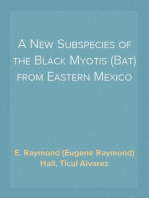 A New Subspecies of the Black Myotis (Bat) from Eastern Mexico