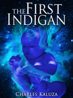 The First Indigan