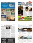kuta-weekly-edition-367-b