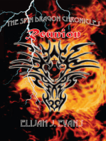 The Spin Dragon Chronicles