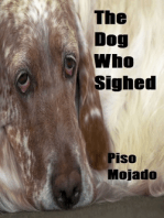 The Dog Who Sighed