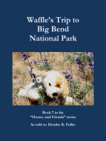 Waffle's Trip to Big Bend National Park