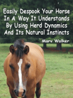 Easily Despook Your Horse In A Way It Understands Using Herd Dynamics And Its Natural Instincts