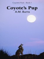 Coyote's Pup