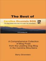 The Best of Carolina Mountain Dog