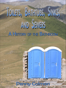 Toilets, Bathtubs, Sinks, and Sewers: A History of the Bathroom