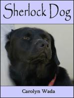 Sherlock Dog