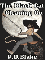 The Black Cat Cleaning Co.