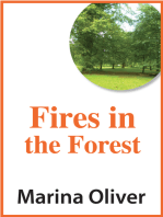 Fires in the Forest
