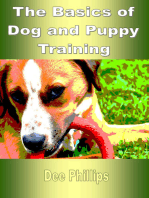 The Basics of Dog and Puppy Training