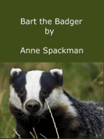 Bart the Badger