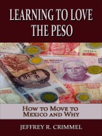 Learning to Love the Peso; How to Move to Mexico and Why
