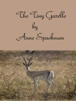 The Tiny Gazelle