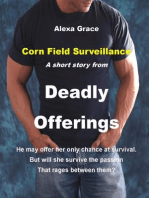Corn Field Surveillance