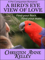 A Bird's Eye View of Love