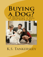 Buying a Dog? A Realistic Look at Bringing A Dog into your Life