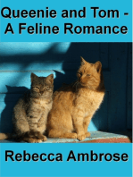 Queenie and Tom, A Feline Romance