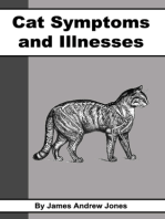 Cat Symptoms and Illnesses