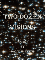 Two Dozen Visions