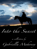 Into the Sunset (5 complete short stories)