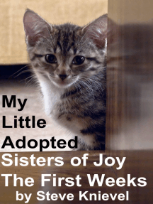 My Little Adopted Sisters of Joy The first Weeks